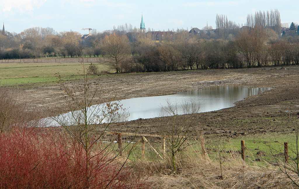 Neu angelegte Blänke südlich des Fuchsbach-Pumpwerk-Auslaufs